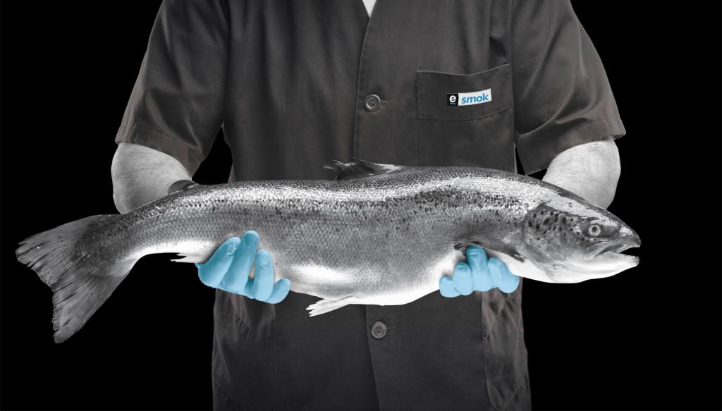 seleccion_salmon